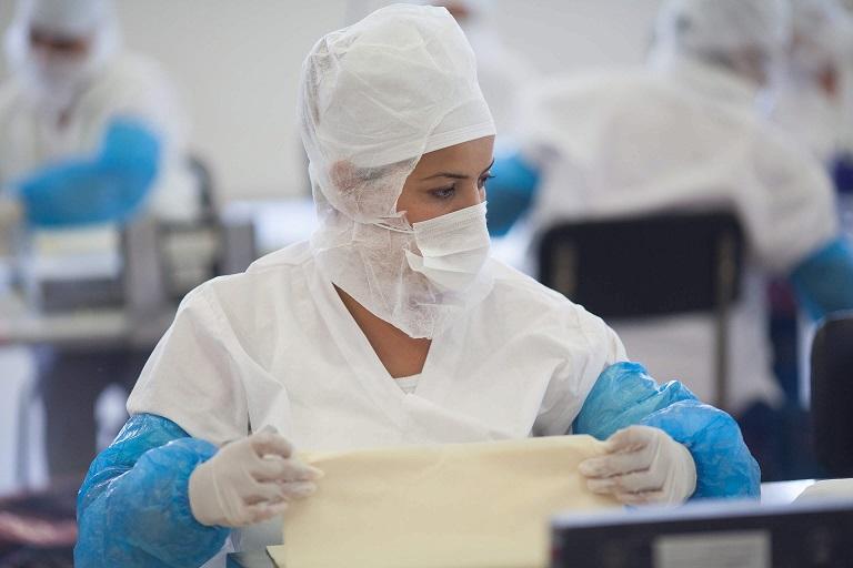 Bella fillo pastry processing plant